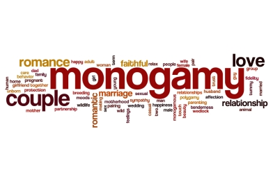 monogamywordcloud